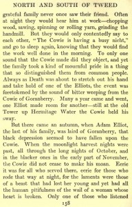 Cowie of Goranberry story (4)
