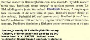 Elwaldside boscus