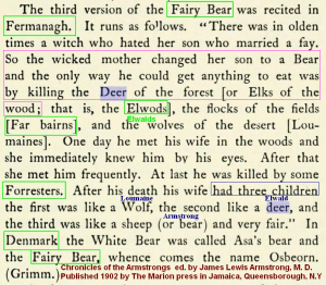 Sagas of Fairy Bear (5)