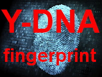 Y-DNA fingerprint