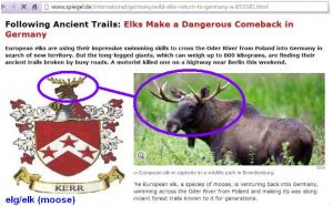 elg-elk-moose Kerr