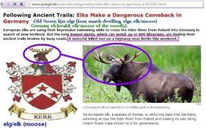 elg-elk-moose-kerr